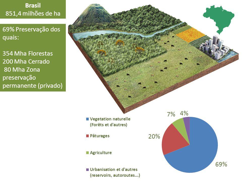 Brasil 851,4 milhões de ha 69% Preservação dos quais: 354 Mha Florestas 200 Mha Cerrado 80 Mha Zona preservação permanente (privado)