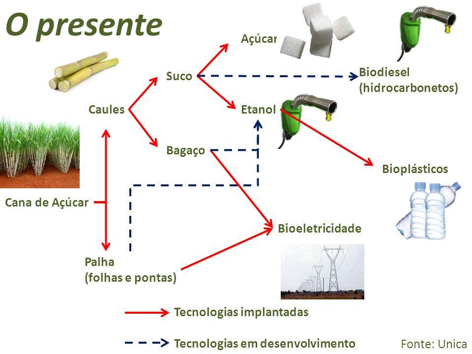 Cana de Açúcar Bioplásticos Biodiesel (hidrocarbonetos) Bioeletricidade Bagaço Palha (folhas e pontas) Etanol Açúcar Suco Caules Tecnologias implantad