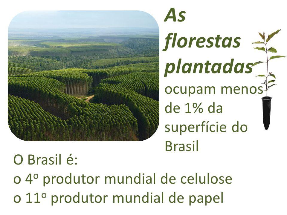O Brasil é: o 4 o produtor mundial de celulose o 11 o produtor mundial de papel As florestas plantadas ocupam menos de 1% da superfície do Brasil