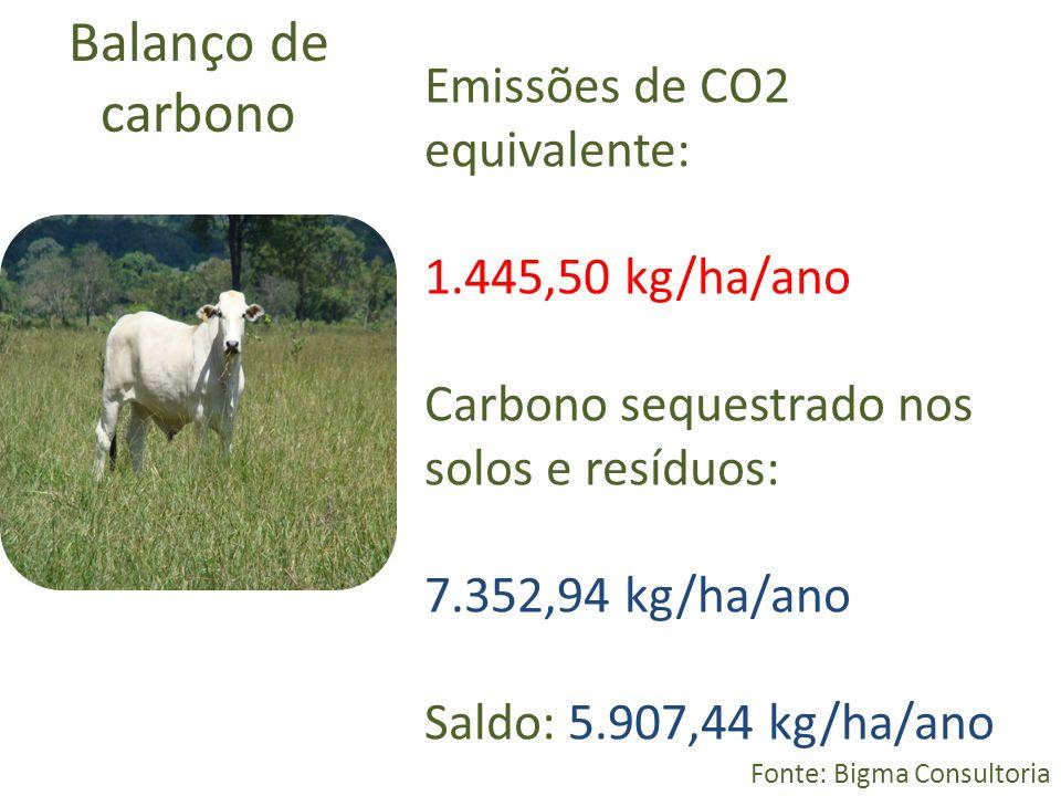 Balanço de carbono Fonte: Bigma Consultoria Emissões de CO2 equivalente: 1.445,50 kg/ha/ano Carbono sequestrado nos solos e resíduos: 7.352,94 kg/ha/a