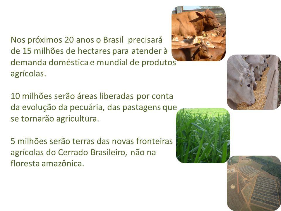 Nos próximos 20 anos o Brasil precisará de 15 milhões de hectares para atender à demanda doméstica e mundial de produtos agrícolas. 10 milhões serão á