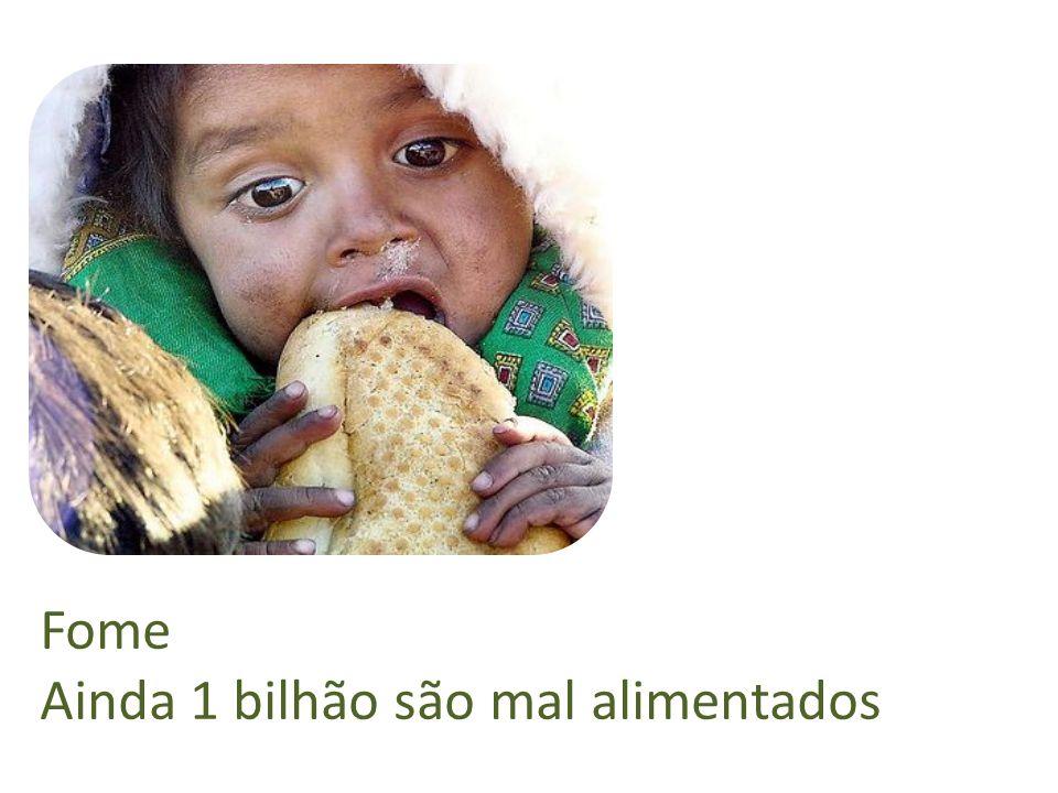 Fome Ainda 1 bilhão são mal alimentados