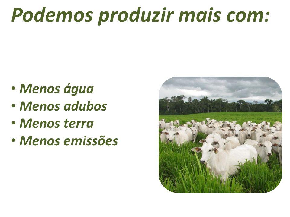 Podemos produzir mais com: Menos água Menos adubos Menos terra Menos emissões