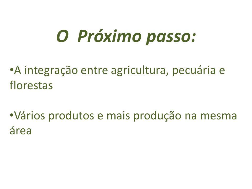 O Próximo passo: A integração entre agricultura, pecuária e florestas Vários produtos e mais produção na mesma área