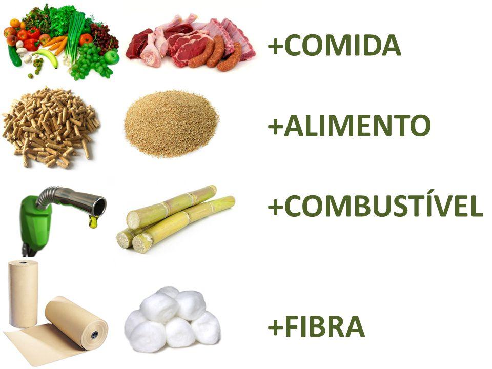 O Brasil há 50 anos importava: Carne Leite Arroz Feijões...