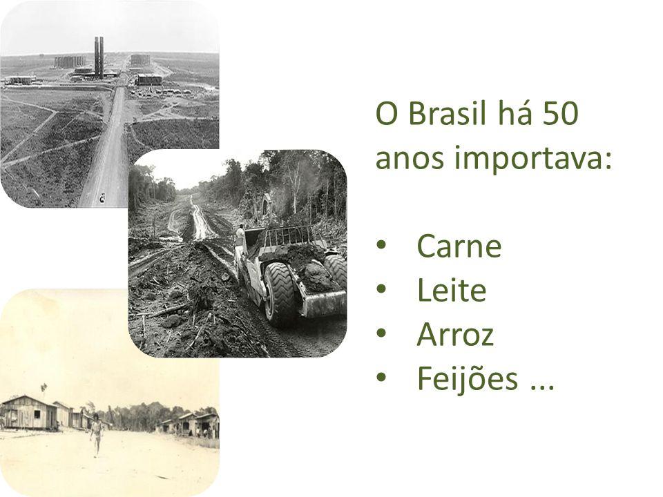 Nos próximos 20 anos o Brasil precisará de 15 milhões de hectares para atender à demanda doméstica e mundial de produtos agrícolas.