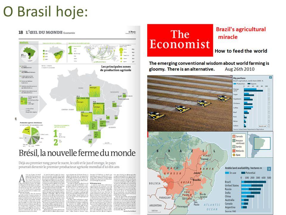 Produção e Consumo de Celulose no Brasil Fonte: BRACELPA