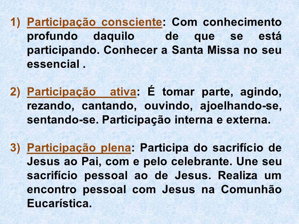 1)Participação consciente: Com conhecimento profundo daquilo de que se está participando. Conhecer a Santa Missa no seu essencial. 2)Participação ativ