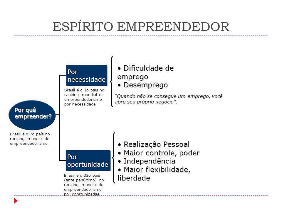 """ESPÍRITO EMPREENDEDOR Por quê empreender? """"Quando não se consegue um emprego, você abre seu próprio negócio"""". Realização Pessoal Realização Pessoal Ma"""