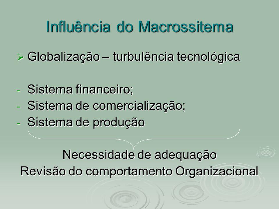 Influência do Macrossitema  Globalização – turbulência tecnológica - Sistema financeiro; - Sistema de comercialização; - Sistema de produção Necessid