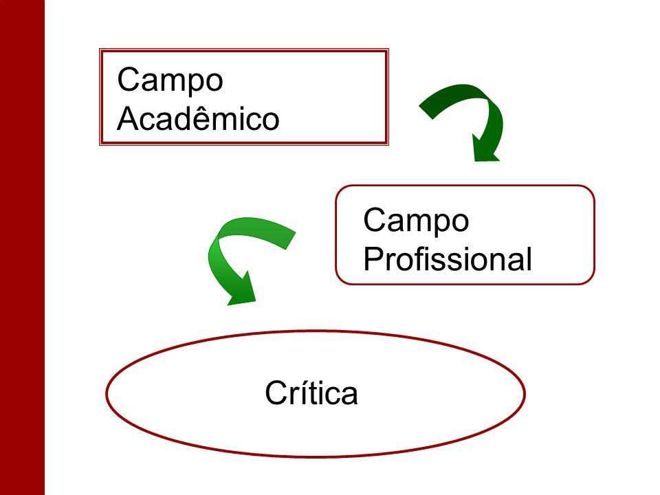 Crítica Campo Profissional Campo Acadêmico