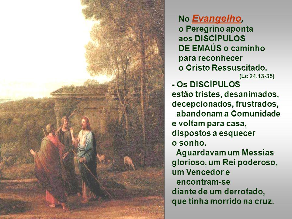 No Evangelho, o Peregrino aponta aos DISCÍPULOS DE EMAÚS o caminho para reconhecer o Cristo Ressuscitado.