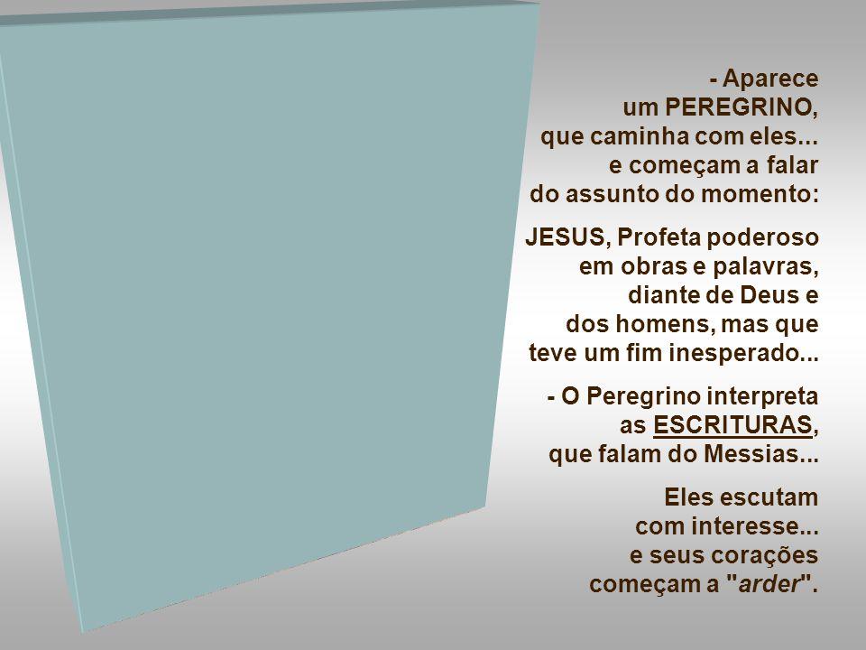 MAIO: 11 => Gincana Vocacional: Igreja São Sebastião e Paróquia Nossa Senhora de Fátima: Comunidade do Verbo Divino – Juiz de Fora - MG AGOSTO: 24 => Retiro Vocacional – Gama/Brasília-DF.