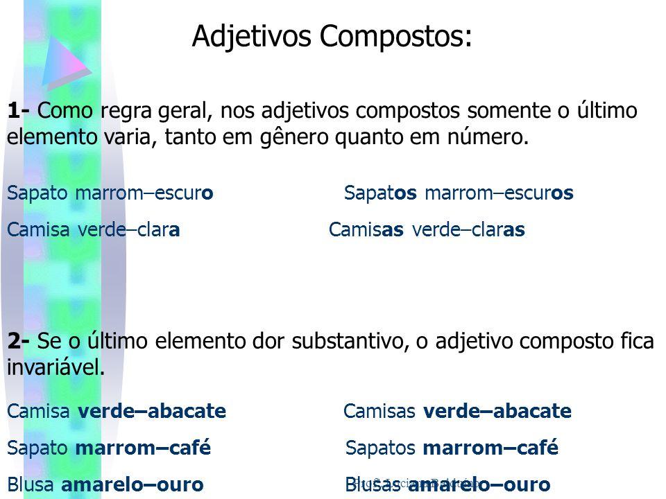 Adjetivos Compostos: 1- Como regra geral, nos adjetivos compostos somente o último elemento varia, tanto em gênero quanto em número. Sapato marrom–esc