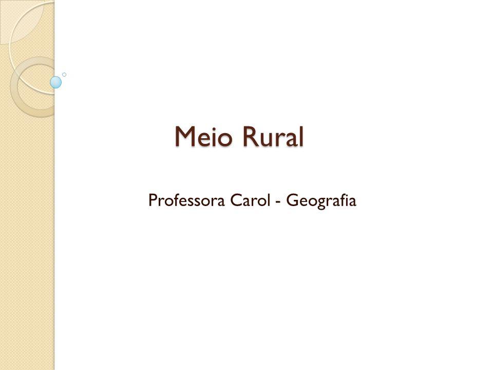 Meio Rural Professora Carol - Geografia