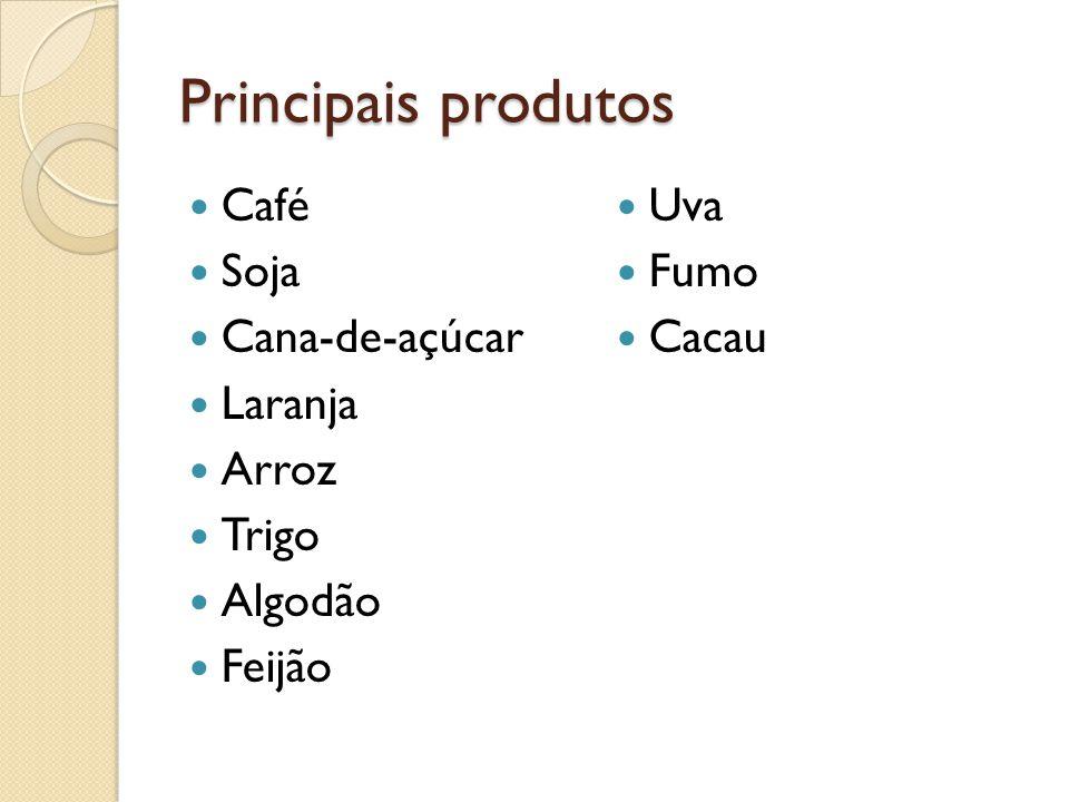 Principais produtos Café Soja Cana-de-açúcar Laranja Arroz Trigo Algodão Feijão Uva Fumo Cacau