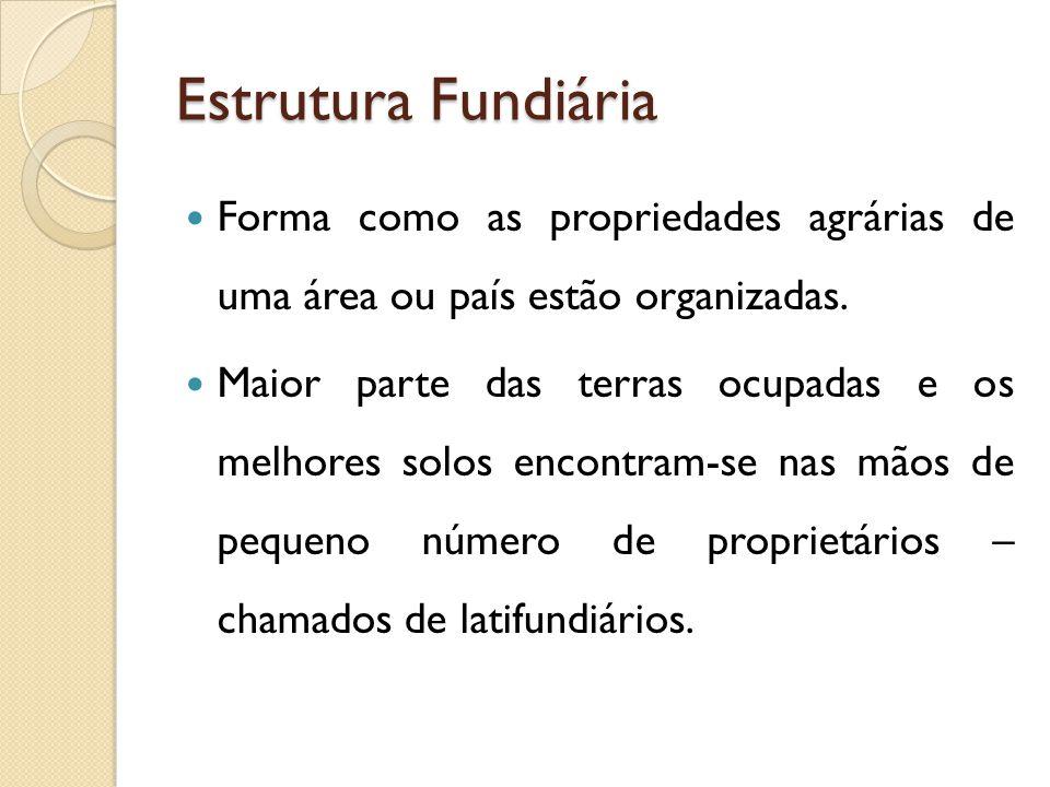Estrutura Fundiária Forma como as propriedades agrárias de uma área ou país estão organizadas. Maior parte das terras ocupadas e os melhores solos enc