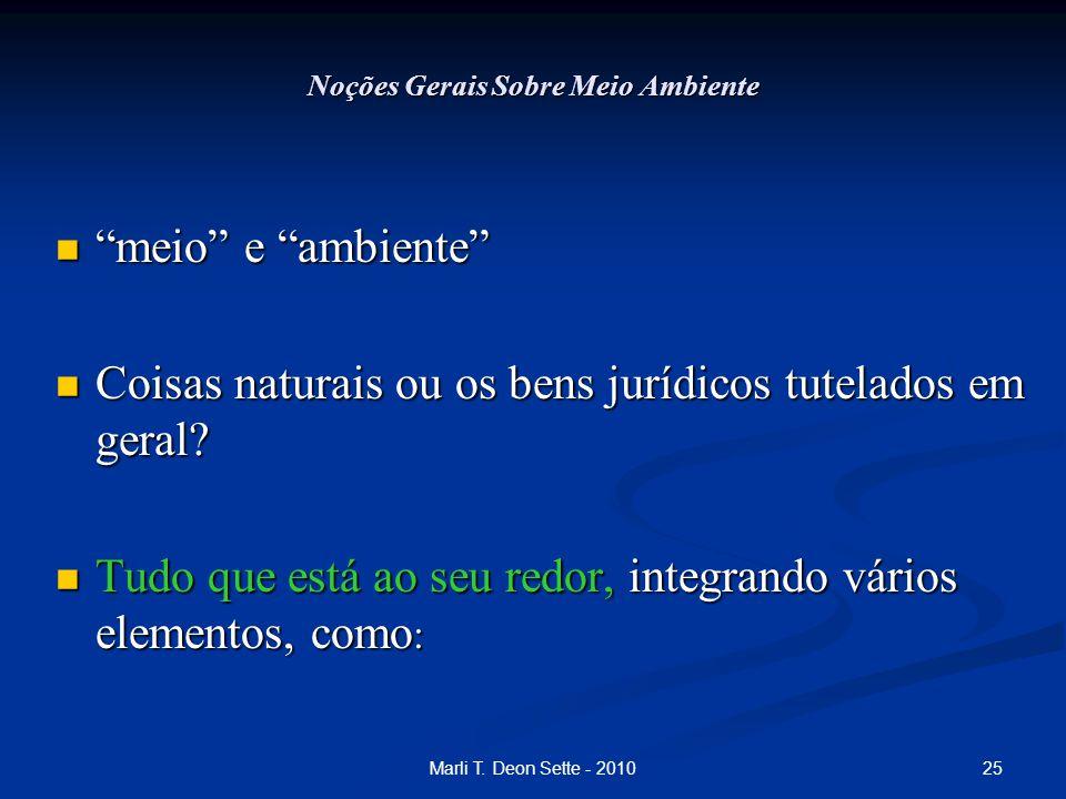 """25Marli T. Deon Sette - 2010 Noções Gerais Sobre Meio Ambiente """"meio"""" e """"ambiente"""" """"meio"""" e """"ambiente"""" Coisas naturais ou os bens jurídicos tutelados"""