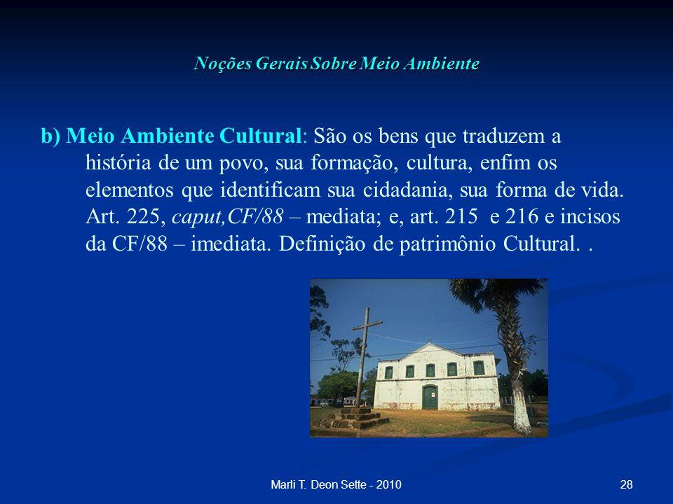 28Marli T. Deon Sette - 2010 Noções Gerais Sobre Meio Ambiente b) Meio Ambiente Cultural: São os bens que traduzem a história de um povo, sua formação