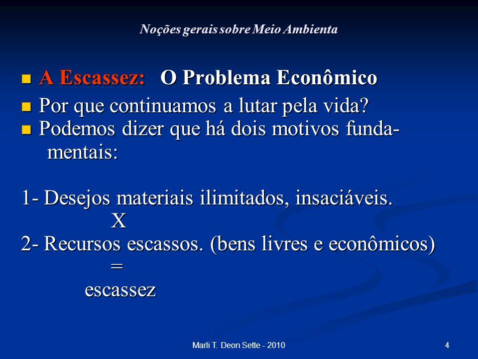 4Marli T. Deon Sette - 2010 Noções gerais sobre Meio Ambienta A Escassez: O Problema Econômico A Escassez: O Problema Econômico Por que continuamos a