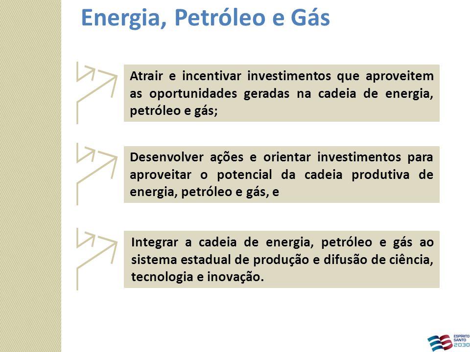 Integrar a cadeia de energia, petróleo e gás ao sistema estadual de produção e difusão de ciência, tecnologia e inovação. Desenvolver ações e orientar