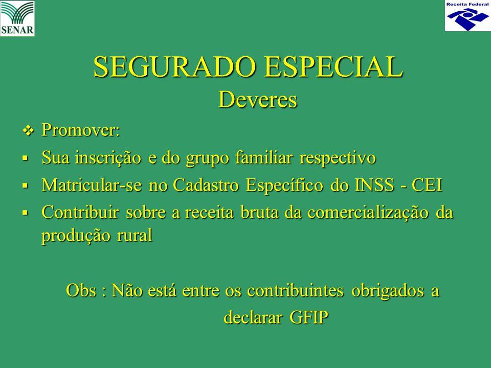 SEGURADO ESPECIAL Deveres  Promover:  Sua inscrição e do grupo familiar respectivo  Matricular-se no Cadastro Específico do INSS - CEI  Contribuir