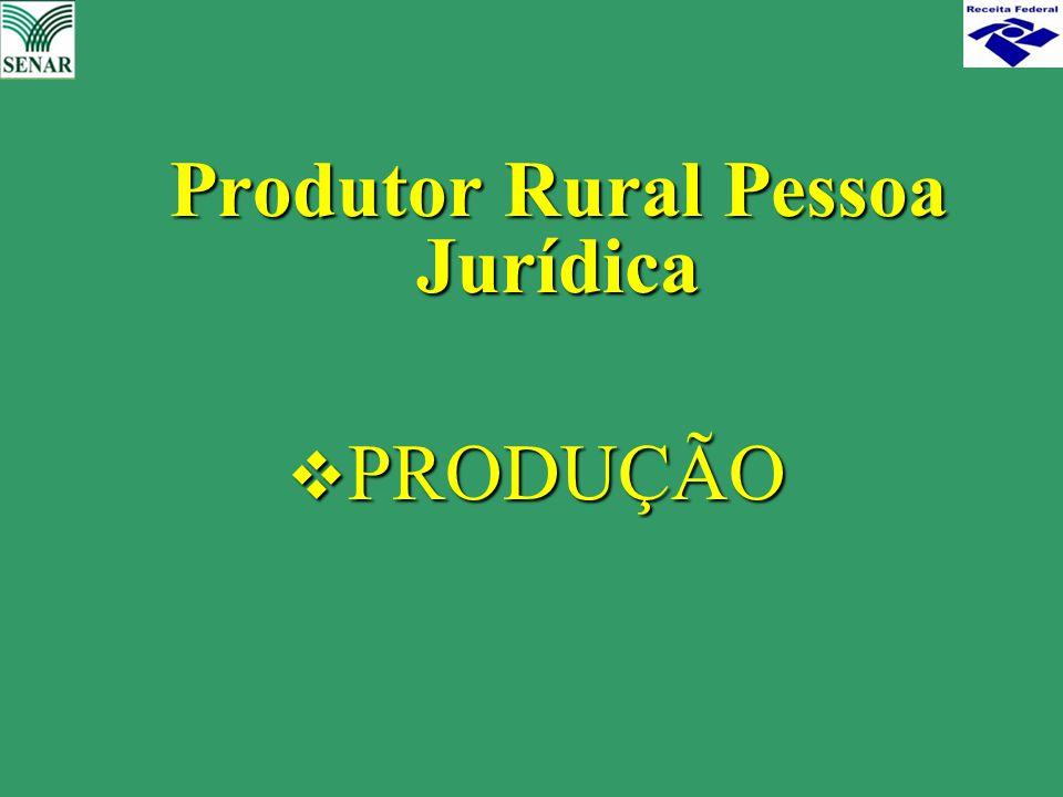 Produtor Rural Pessoa Jurídica  PRODUÇÃO