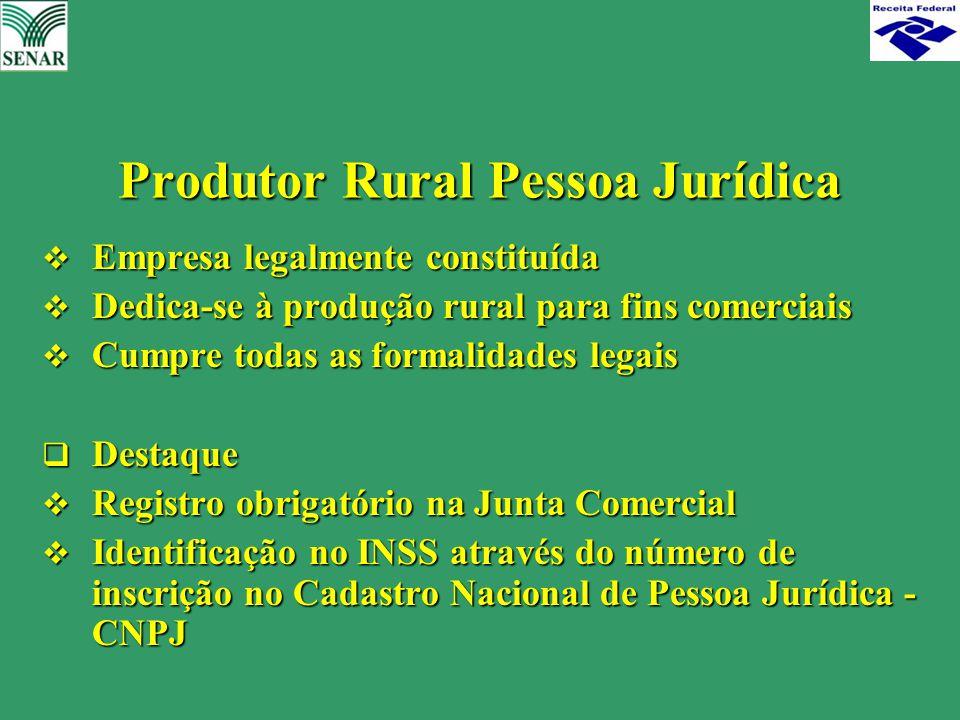 Produtor Rural Pessoa Jurídica  Empresa legalmente constituída  Dedica-se à produção rural para fins comerciais  Cumpre todas as formalidades legai