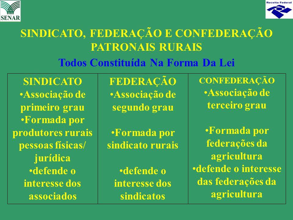 Todos Constituída Na Forma Da Lei SINDICATO Associação de primeiro grau Formada por produtores rurais pessoas físicas/ jurídica defende o interesse do