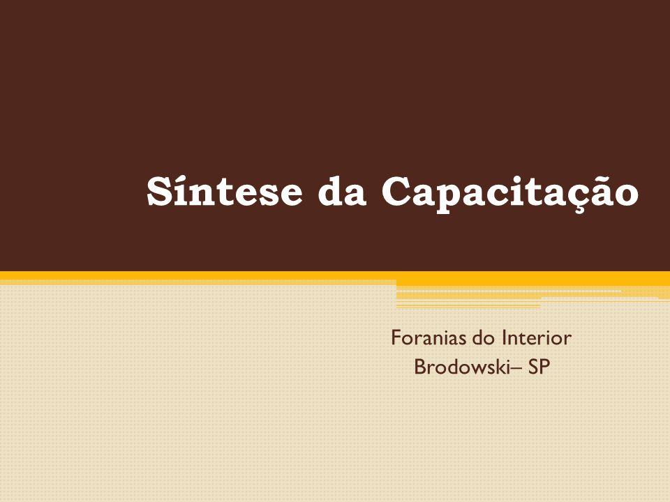 Síntese da Capacitação Foranias do Interior Brodowski– SP