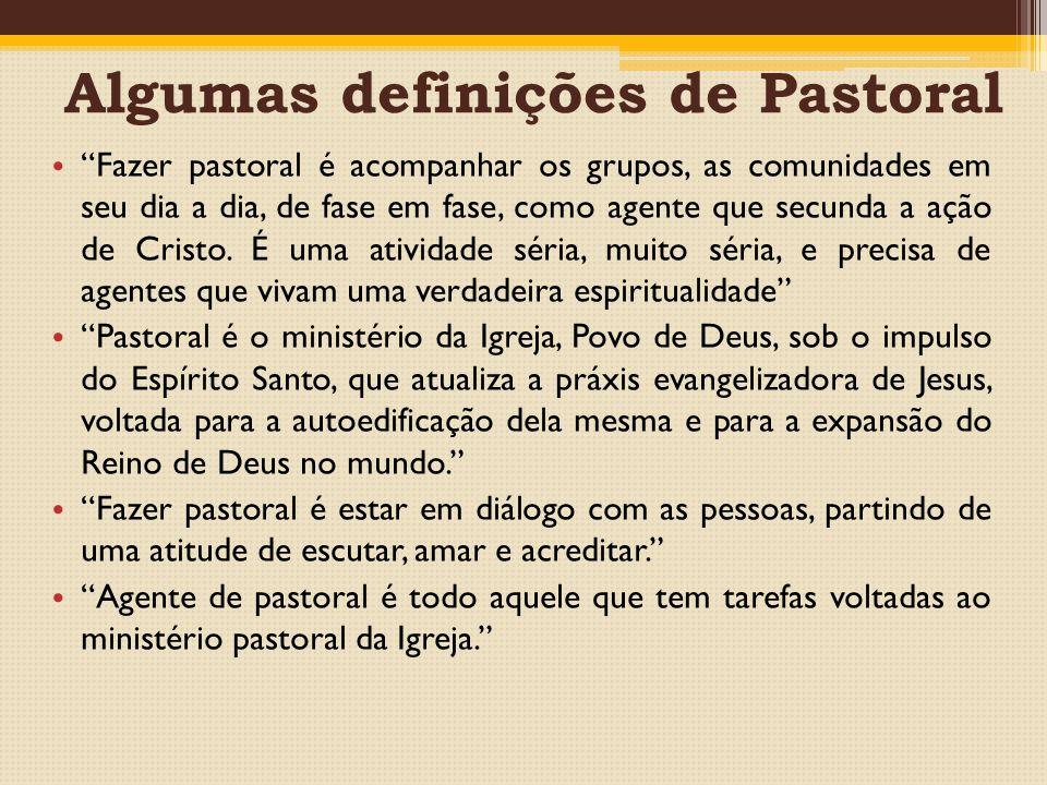 Algumas definições de Pastoral Fazer pastoral é acompanhar os grupos, as comunidades em seu dia a dia, de fase em fase, como agente que secunda a ação de Cristo.