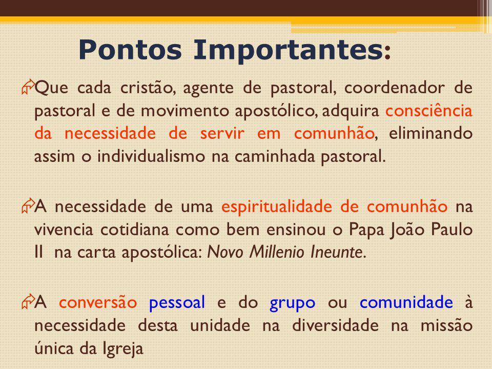 Pontos Importantes :  Que cada cristão, agente de pastoral, coordenador de pastoral e de movimento apostólico, adquira consciência da necessidade de