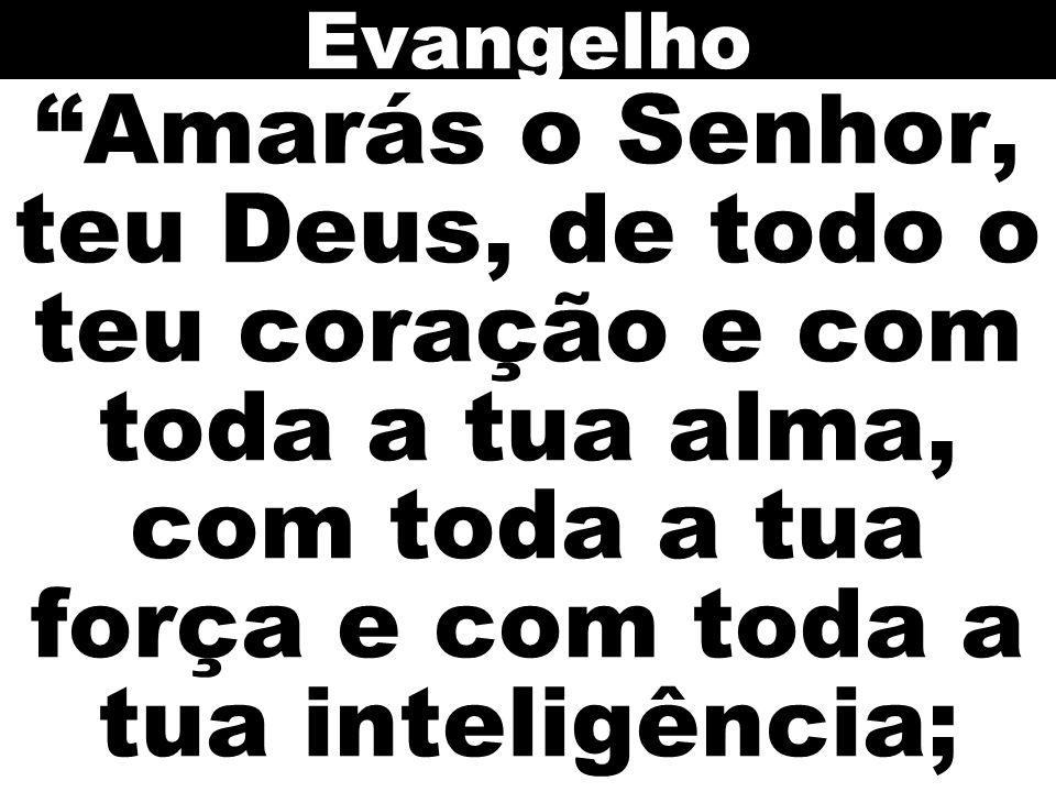 """""""Amarás o Senhor, teu Deus, de todo o teu coração e com toda a tua alma, com toda a tua força e com toda a tua inteligência; Evangelho"""