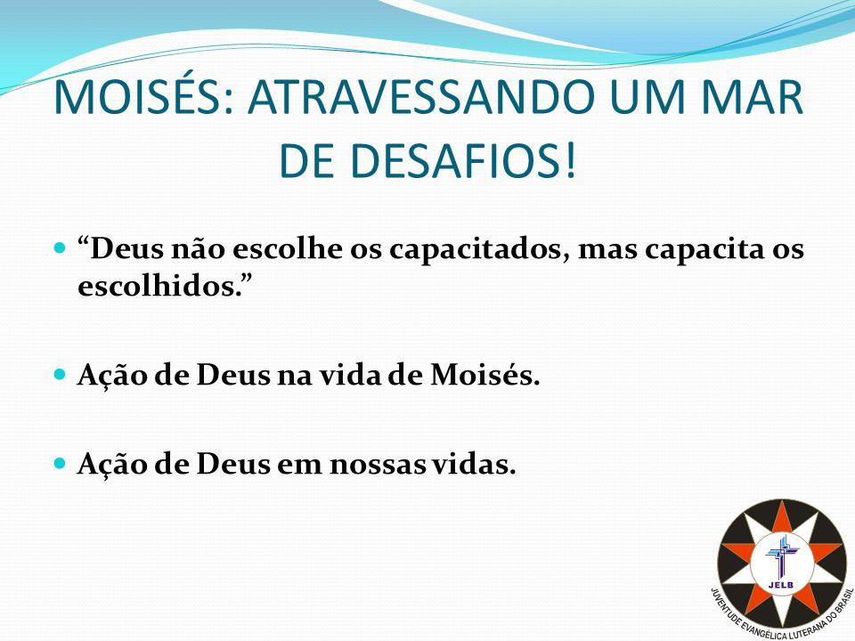 Conclusão Moisés enfrentou um mar de desafios.Claro que ele não fez isso sozinho.