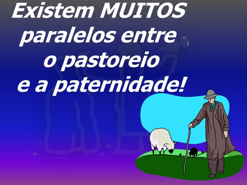 Existem MUITOS paralelos entre o pastoreio e a paternidade!