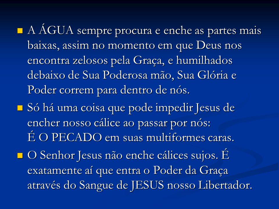 Todos os nossos pecados foram colocados no cálice que Jesus levou para o Getsêmani.