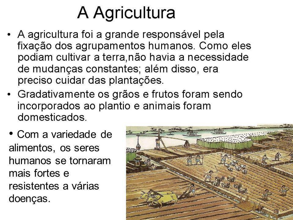 Com a variedade de alimentos, os seres humanos se tornaram mais fortes e resistentes a várias doenças.