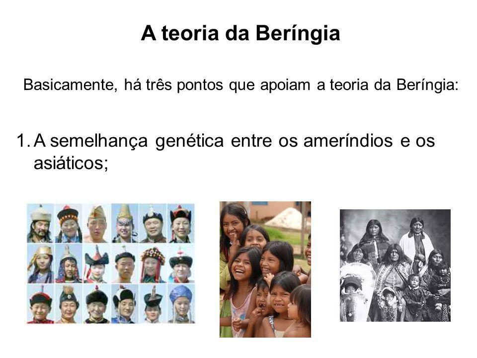 A teoria da Beríngia Basicamente, há três pontos que apoiam a teoria da Beríngia: 1.A semelhança genética entre os ameríndios e os asiáticos;