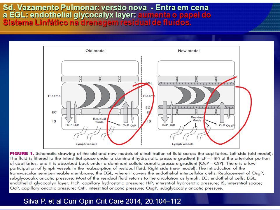 Sd. Vazamento Pulmonar: versão nova - Entra em cena a EGL: endothelial glycocalyx layer: aumenta o papel do Sistema Linfático na drenagem residual de