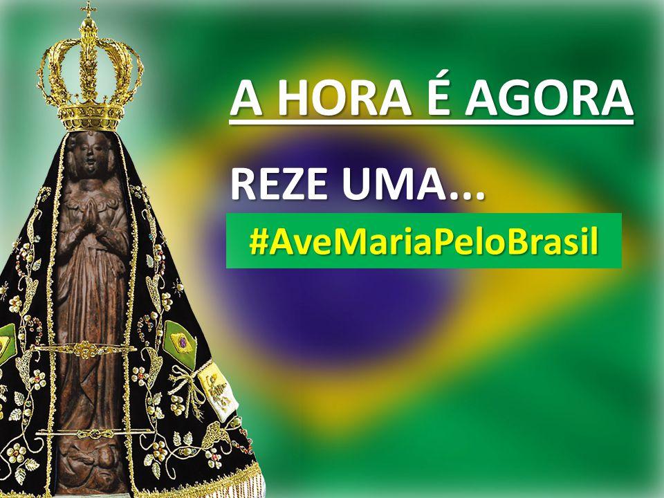 A HORA É AGORA #AveMariaPeloBrasil REZE UMA...