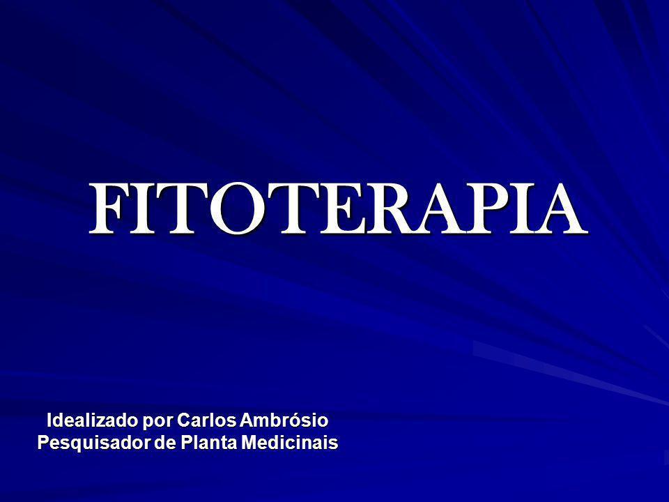FITOTERAPIA Idealizado por Carlos Ambrósio Pesquisador de Planta Medicinais