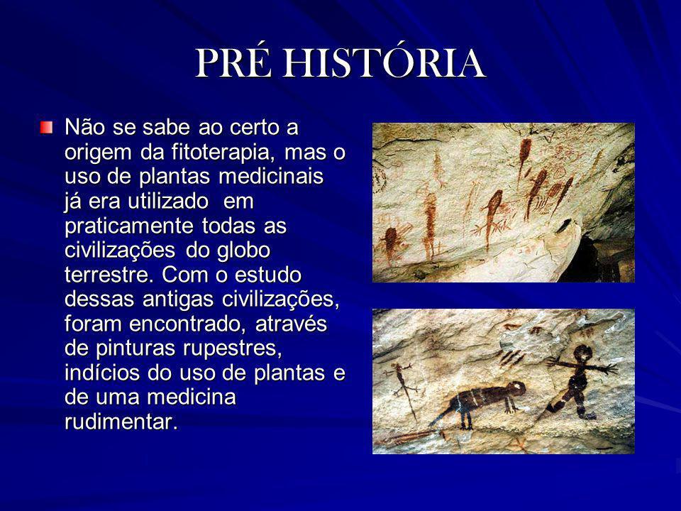 PRÉ HISTÓRIA Não se sabe ao certo a origem da fitoterapia, mas o uso de plantas medicinais já era utilizado em praticamente todas as civilizações do g