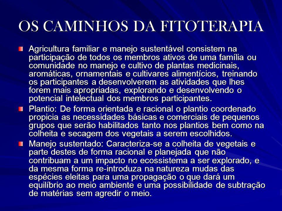 OS CAMINHOS DA FITOTERAPIA Agricultura familiar e manejo sustentável consistem na participação de todos os membros ativos de uma família ou comunidade