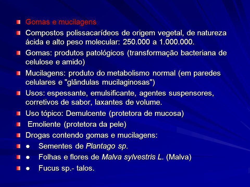 Gomas e mucilagens Compostos polissacarídeos de origem vegetal, de natureza ácida e alto peso molecular: 250.000 a 1.000.000. Gomas: produtos patológi