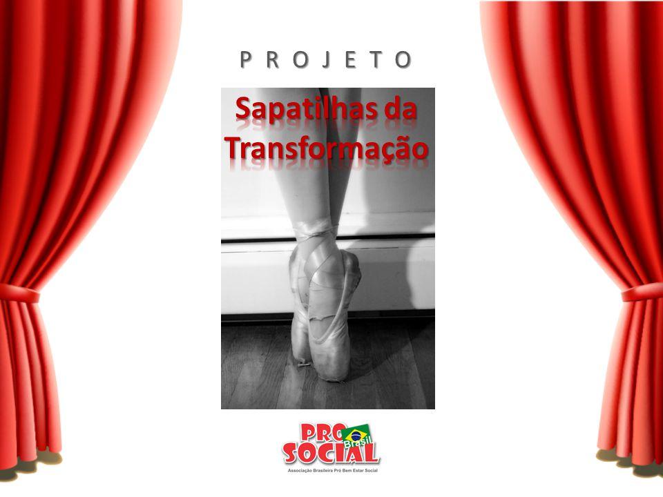 Promoção de curso de formação de balé para 120 meninas de 4 a 17 anos de escolas públicas da Vila Liviero/SP e comunidades do entorno.