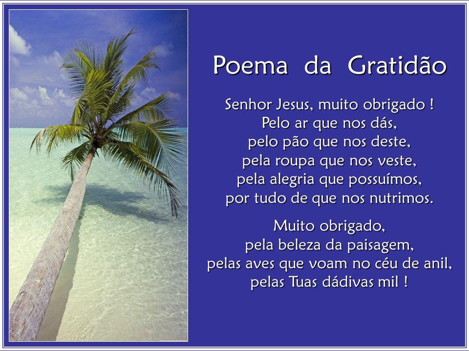 Poema da Gratidão Senhor Jesus, muito obrigado .