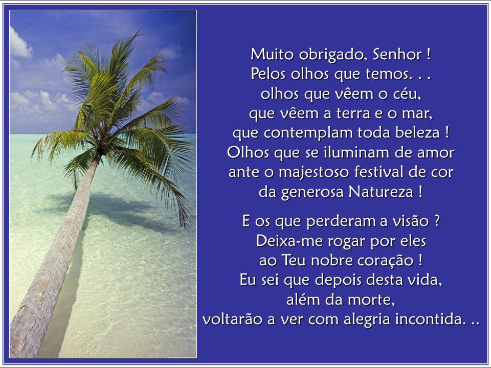 Amélia Rodrigues, foi notável poetisa, professora emérita, escritora consagrada, teatróloga, legítimo expoente cultural das Letras na Bahia.
