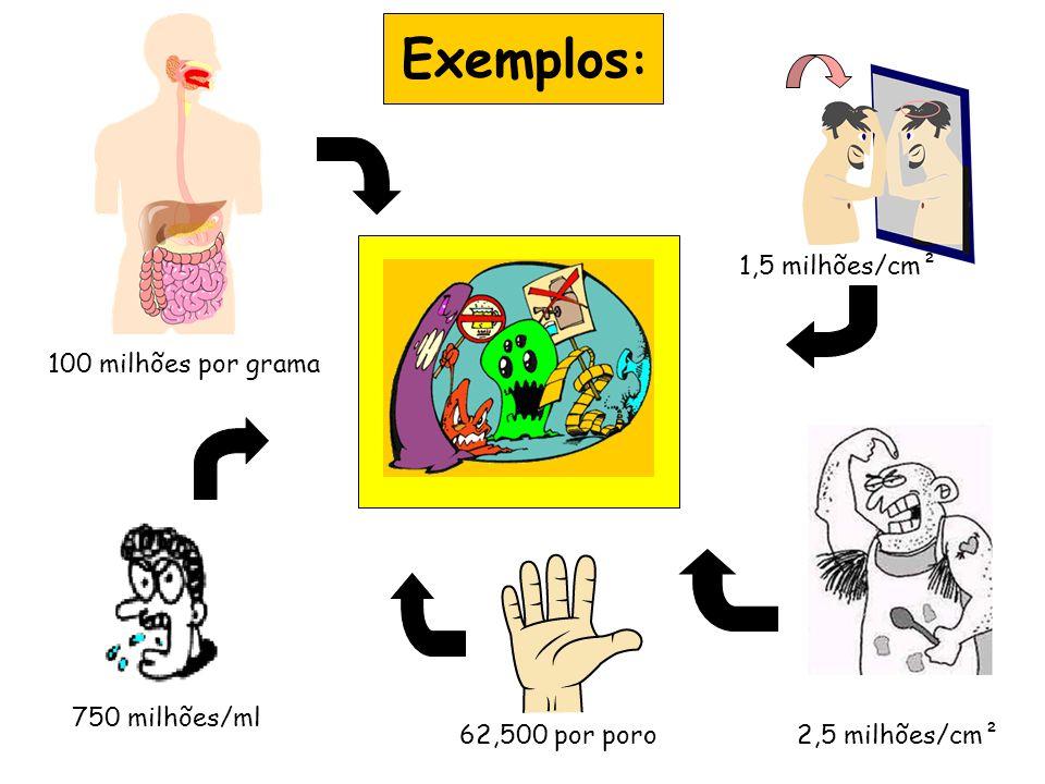 100 milhões por grama 750 milhões/ml 62,500 por poro 1,5 milhões/cm² 2,5 milhões/cm² Exemplos :
