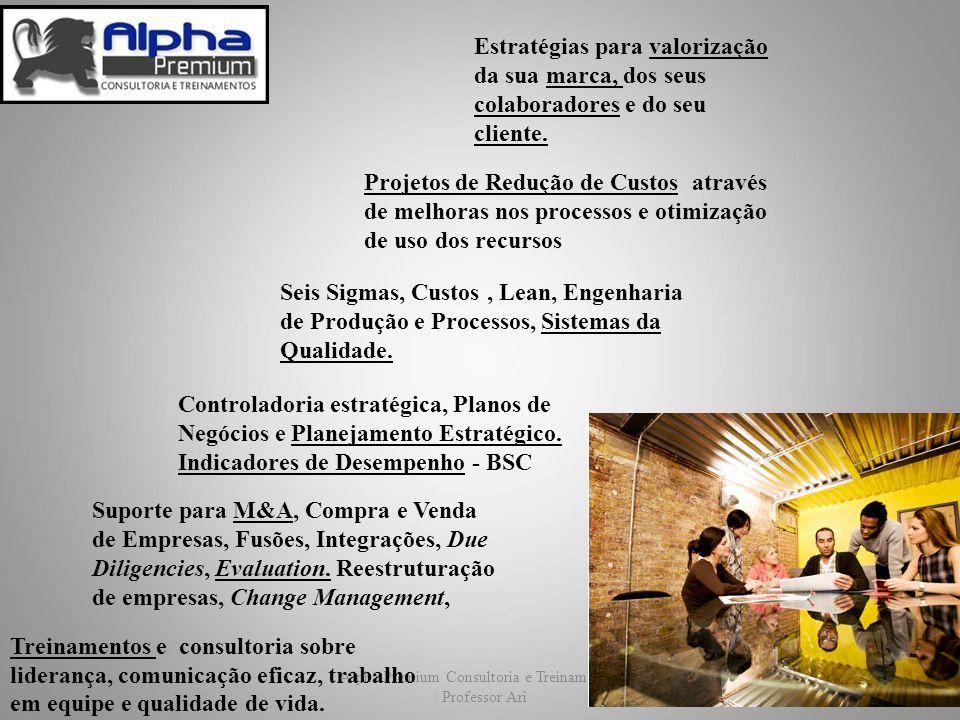 Alpha Premium Consultoria e Treinamentos / Professor Ari Controladoria estratégica, Planos de Negócios e Planejamento Estratégico. Indicadores de Dese