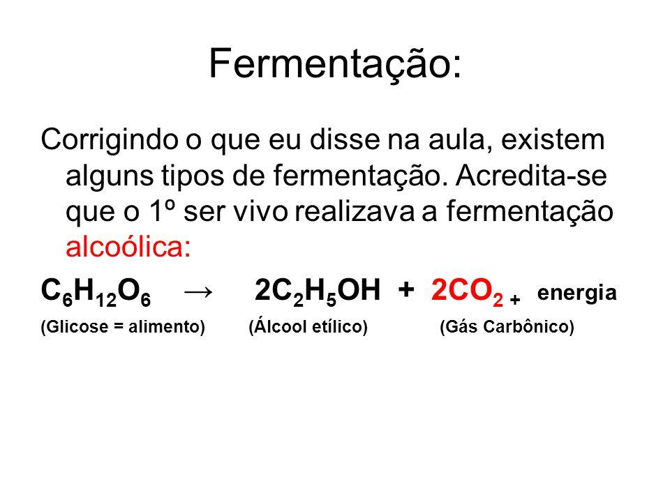 Fermentação: Corrigindo o que eu disse na aula, existem alguns tipos de fermentação.